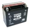 Batterie HONDA CN250 Helix, fusion TypeXX 250 ccm Bj. 86-07 / YUASA YTX12-BS